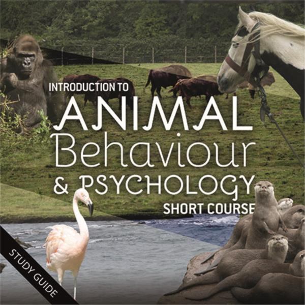 Animal Behaviour and Psychology - Short Course