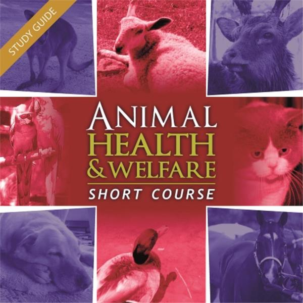 Animal Health and Welfare Short Course