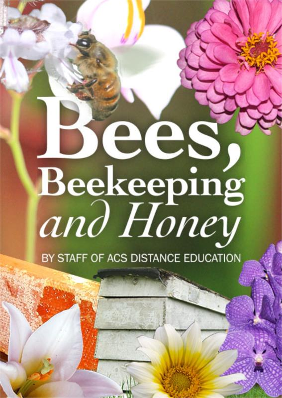 Bees, Beekeeping and Honey - PDF ebook