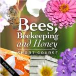 Bees, Beekeeping and Honey Short Course