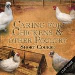 Caring for Chickens and other Poultry Short Course