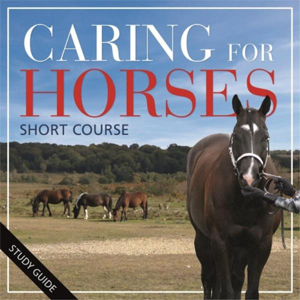 Caring for Horses- Short Course