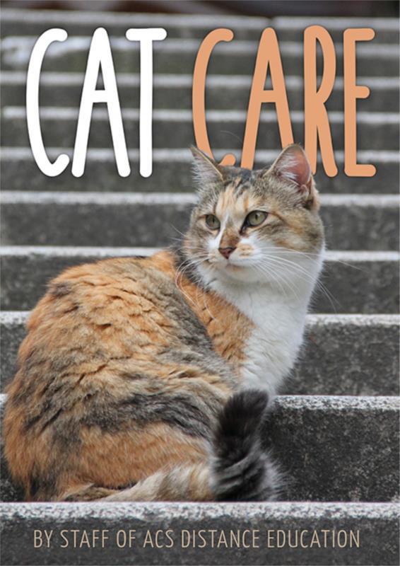Cat Care PDF eBook