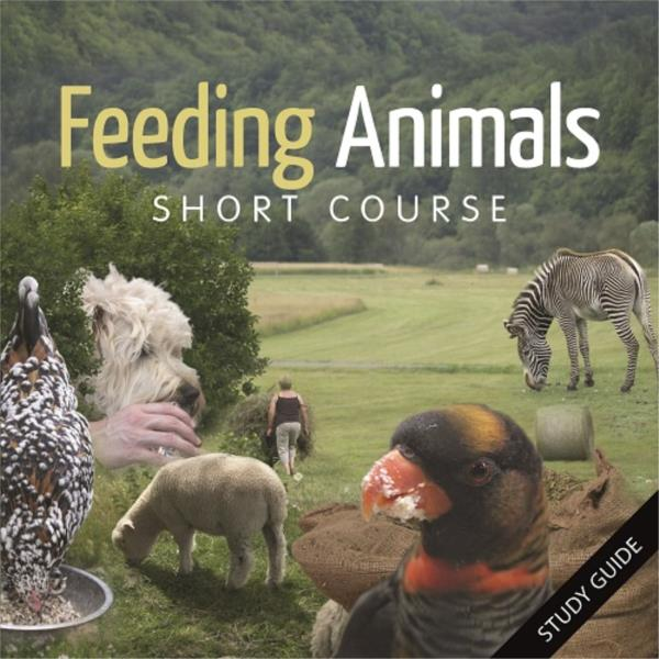 Feeding Animals- Short Course