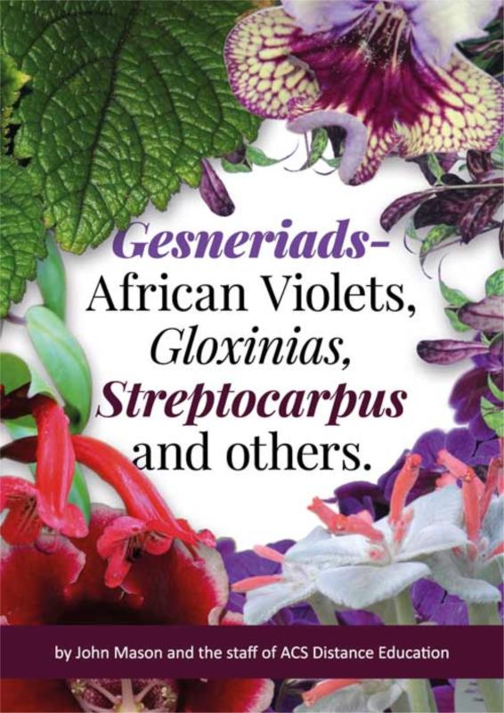 Gesneriads- African Violets, Gloxinias, Streptocarpus and others