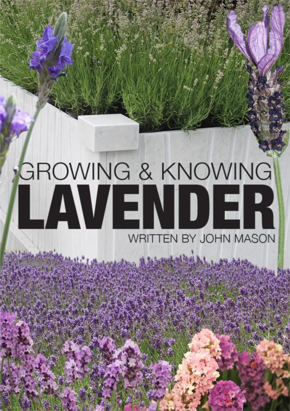 Growing & Knowing Lavender- PDF Ebook