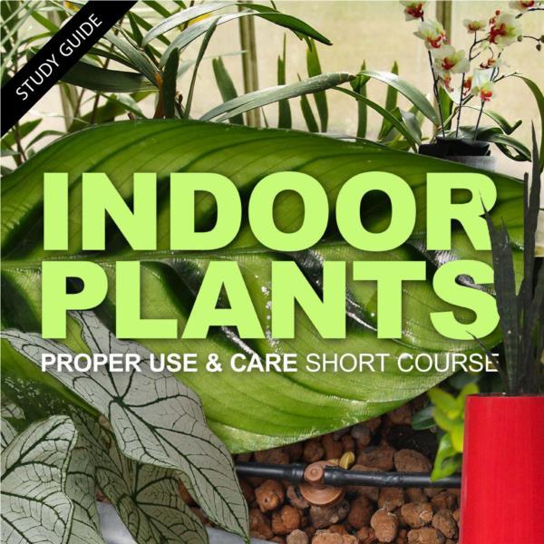 Indoor Plants Short Course