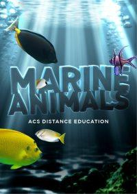 Marine Animals - PDF ebook