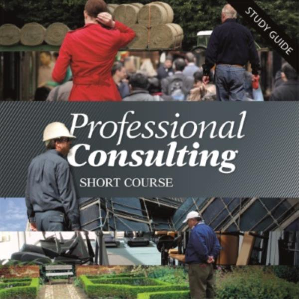 Professional Consulting - Short Course