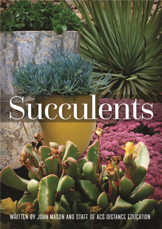 Succulents- PDF ebook