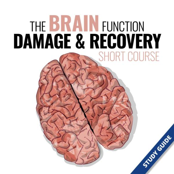 The Brain Function, Damage and Recovery Short Course